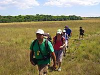 Hiking in the Cerrado